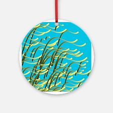 Seaweed on aqua Ornament (Round)