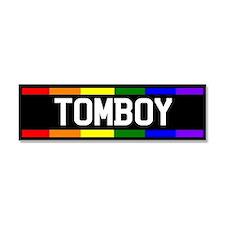 Gay and lesbian Car Magnet 10 x 3