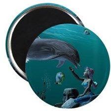 Dolphin playing Magnets