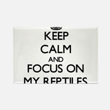 Keep Calm and focus on My Reptiles Magnets