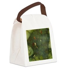 Koi Fish Pond Canvas Lunch Bag