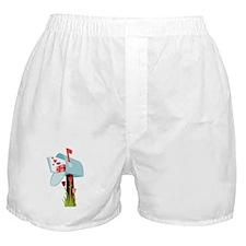 Valentine Mailbox Boxer Shorts