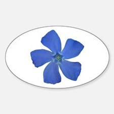 Periwinkle Oval Decal