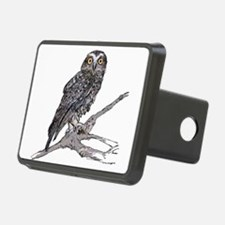 Southern Boobook Owl Hitch Cover