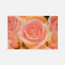 Rose 2014-0932 Magnets