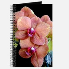 Orange Orchids 2 Journal