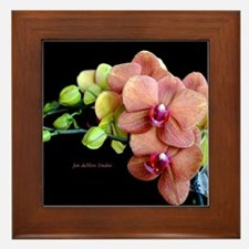 Orange Orchids 2 Framed Tile