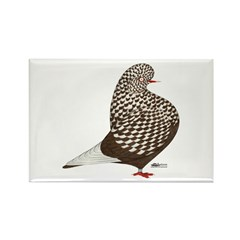 Brown Teager Pigeon Rectangle Magnet (10 pack)