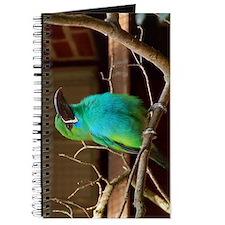 Perched Green Bird Journal