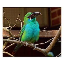 Perched Green Bird King Duvet