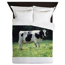 Cow Queen Duvet