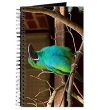Perched Green Bird Journal