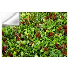 Closeup of specialty lettuce mixture growing in a  Wall Decal