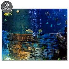 Unique Samantha Puzzle