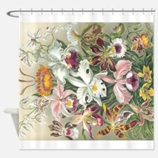 Orchidae Flowers Shower Curtain