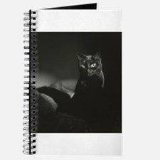 Unique Chat noir Journal
