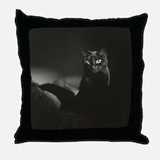 Cute Chat Throw Pillow
