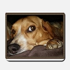Beagle ~ One Love Mousepad