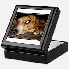 Beagle ~ One Love Keepsake Box