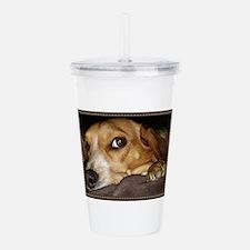 Beagle ~ One Love Acrylic Double-wall Tumbler