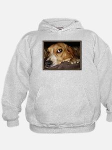 Beagle ~ One Love Hoodie