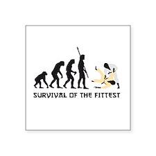 Evolution Judo B 3c Sticker