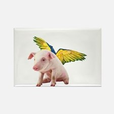 Pigs Fly Magnets