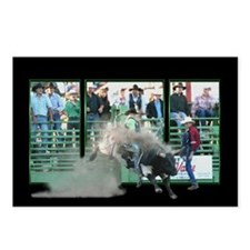 Funny Bull riding Postcards (Package of 8)