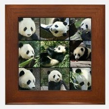 Bear collage Framed Tile