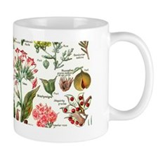Botanical Illustrations - Larousse Plan Mug