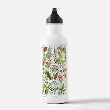 Botanical Illustration Water Bottle