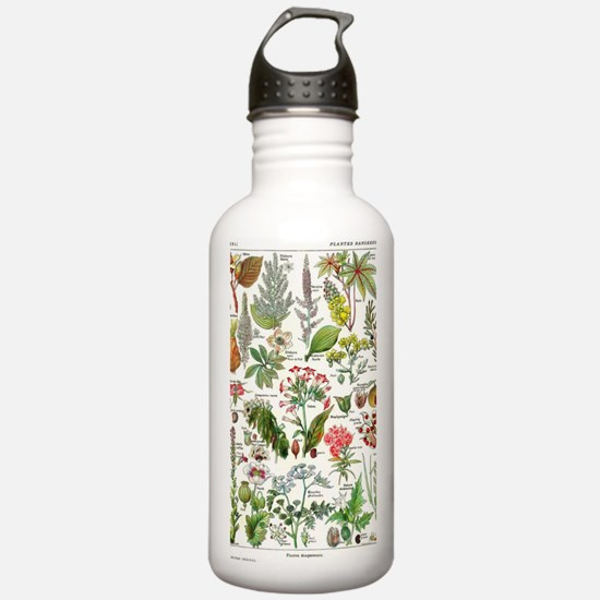 Botanical Illustration Water Bottle