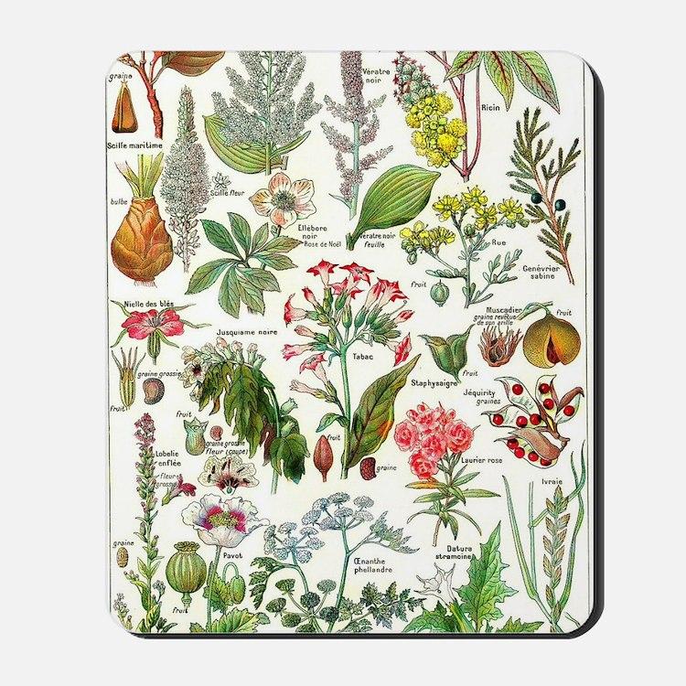 Botanical Illustrations - Larousse Plant Mousepad