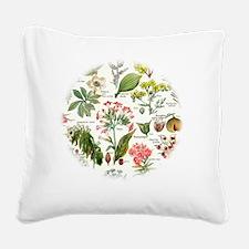 Botanical Illustrations - Lar Square Canvas Pillow