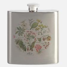 Botanical Illustrations - Larousse Plants Flask