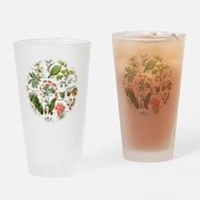 Botanical Illustrations - Larousse  Drinking Glass