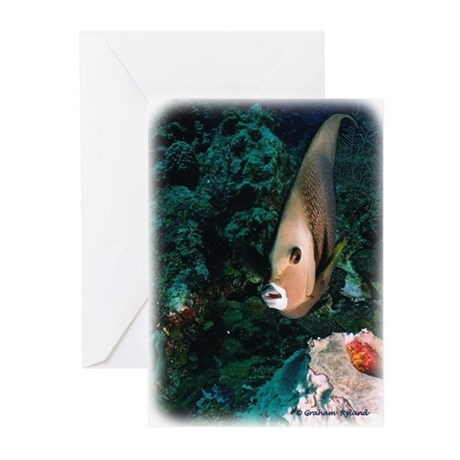 Grey Angelfish Greeting Cards (Pk of 10)