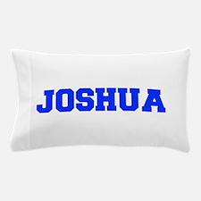JOSHUA-fresh blue Pillow Case