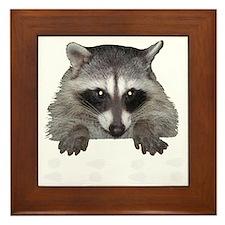 Raccoon and Tracks Framed Tile