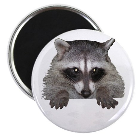 """Raccoon and Tracks 2.25"""" Magnet (100 pack)"""