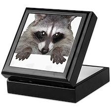 Raccoon and Tracks Keepsake Box
