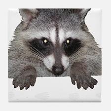 Raccoon and Tracks Tile Coaster