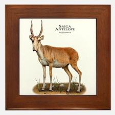 Saiga Antelope Framed Tile