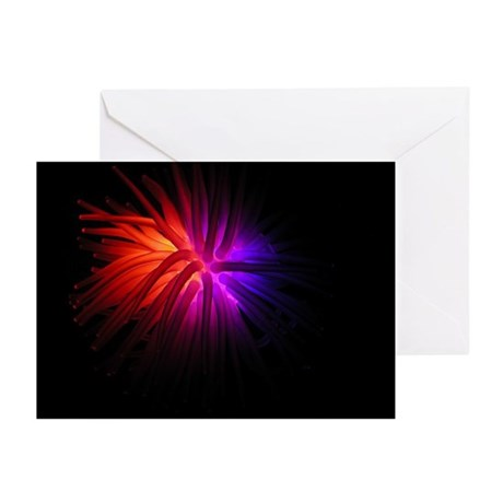 Abstract Bright Greeting Cards (Pk of 10)