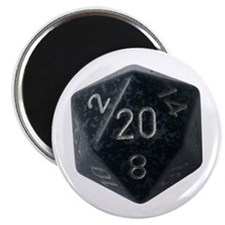 D20 Magnets