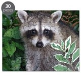 Raccoon puzzles Puzzles
