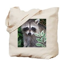 Baby Raccoon Photo Tote Bag