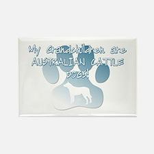 Aus Cattle Dog Grandchildren Rectangle Magnet (10