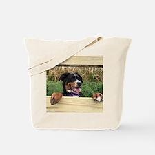 Cool Sennenhund Tote Bag
