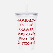 jambalya Acrylic Double-wall Tumbler